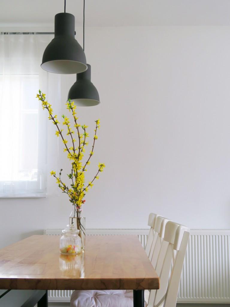 Ikea održiv razvoj